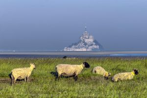 Le Mont St Michel gue de la chaine Manche France by hubert61