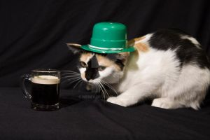 St Patricks Day Fiona by Nebey