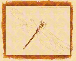 Dragonfly Amber by JaM-FaiRY