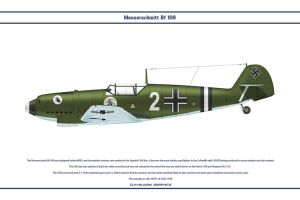 Bf 109 D-1 ZG2 1 by WS-Clave