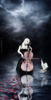 The cello...2........................ by dl120471