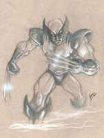 wolverine by airold