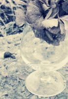 Vintage by illusionality