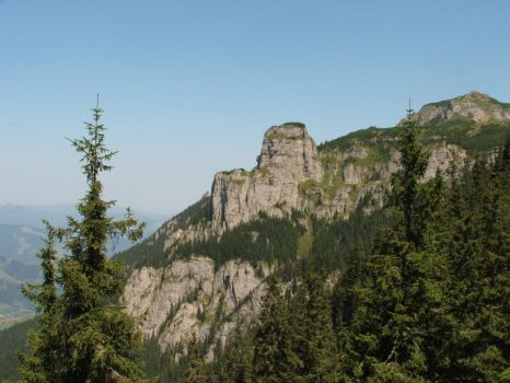 rocky flank by AsiWizard