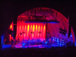 Peter Gabriel at the Hollywood Bowl n2 by InkTheEchidna
