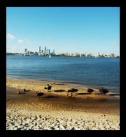 Perth City 2 by ice-bear