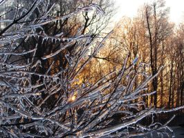 Ice Storm Sunrise 2 by PhatPhishHugh