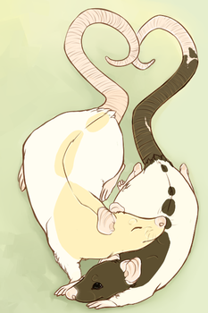 Ratties by Khrests