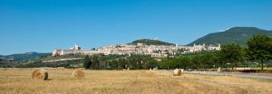 Panorama Assisi - Italy (Umbria) by Patmans
