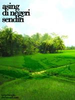 Indonesia Crop Circle by strght