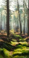 Cannock Chase by Swilly35