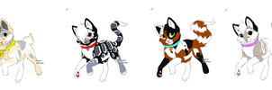 Kitty Point Adopts Batch 1 CLOSED by Akssel-Adopts