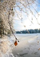 Winter has come suddenly. by KariLiimatainen