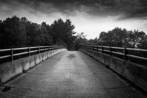 Cattle Bridge by Wrightam