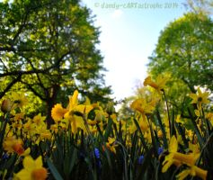 Shades Of April 59 by dandy-cARTastrophe
