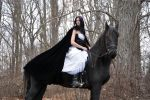 Horse and Rider Stock 06 by MeetMeAtTheLake2Nite