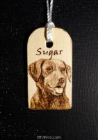 Black lab (Sugar) - Mini woodburning by brandojones