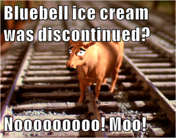 Bluebell's reaction to bluebell ice cream recalled by MackAttack4life