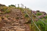 Ascending Arthur's Seat 1 by wildplaces