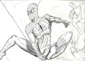 Spiderman in an hour by danlewis4475