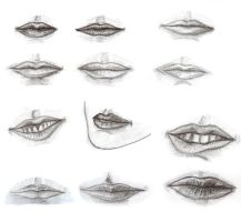 Some Lips from studying by Bilgekhan