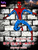 The Incredible Spider-Man tv teaser poster by stick-man-11