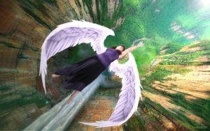 Angel's Fall by NightWish208