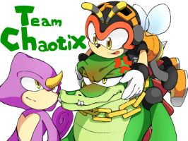 Team Chaotix by yuki8686