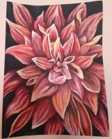 Acrylic flower by tedo14