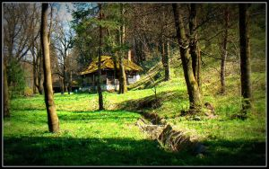 House in woods by soulindarkness