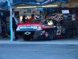 Harvick Nov 2012 PIR by RaganRaceGirl
