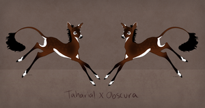 Obscura x Taharial Fawn for WhiteStallionss1 by SkullOfAnubis