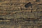 Cracked Wood 1 by objekt-stock