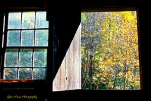 The Open Window by GlassHouse-1