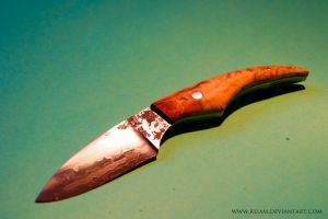 Knife / root by Reiam