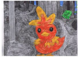 Torchic in the Deep Woods by ienzo628