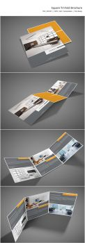 Square Tri-Fold Brochure by shapshapy