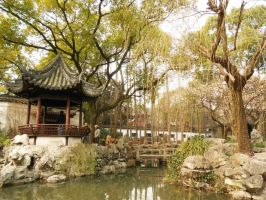 Willow Pond by tokyocalling