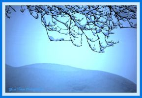 Winter Blues by GlassHouse-1