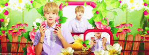[Cover Facebook] Han's Request - Strawberry Baekie by YongYoMin