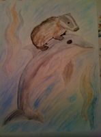 Badger and Dolphin by Derrico13