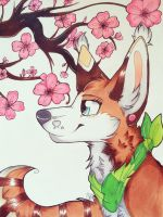 |~cherry blossoms~| by artsypawzz
