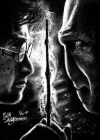 Harry Potter - The Final by DiesValentini