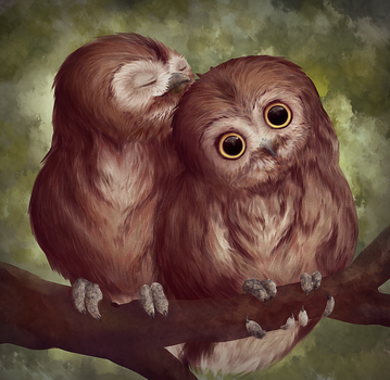 Drawing Practice: Cuddling owls by Kawaii-Fruit