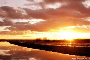 Wetland Sunset by aggz-w