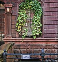 Brownstone Garland by steeber
