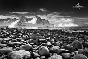 Black and White by Stridsberg