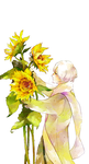 RUSSIA AND SUNFLOWERS by mctee