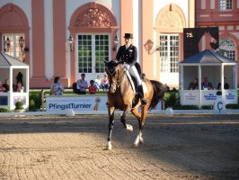 Vibrant Light Dressage Riding Extended Trot by LuDa-Stock