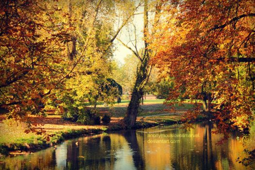 autumn pond by ANONYMOUSlovesMARVEL